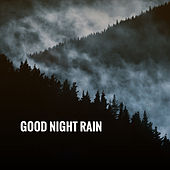 Good Night Rain by Various Artists
