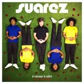 Ni rancoeur ni colère (Soleil Bleu Remix) de Suarez