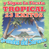 Grandes del Sureste by Various Artists