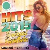 Hits 2015 de Various Artists