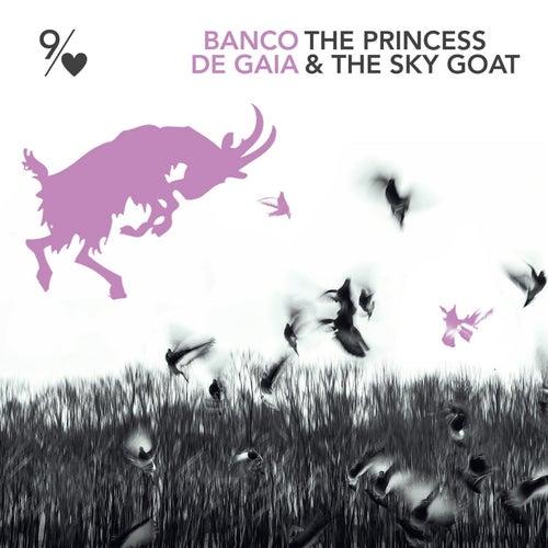The Princess and the Sky Goat von Banco de Gaia