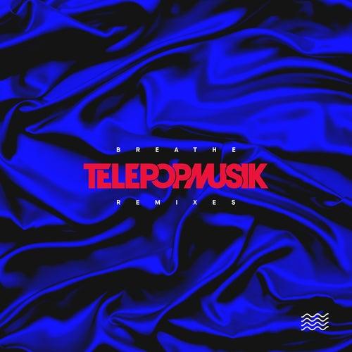 Breathe (Remixes) by Telepopmusik