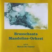 Brasschaats Mandoline Orkest BMO 002 by Brasschaats Mandoline Orkest