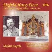 Karg-Elert: Complete Organ Works, Vol. 13 by Stefan Engels