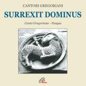 Surrexit dominus (Canto gregoriano) by Fulvio Rampi Cantori Gregoriani