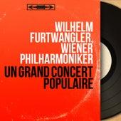 Un grand concert populaire (Mono Version) by Wilhelm Furtwängler