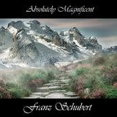 Absolutely Magnificent Franz Schubert by Franz Schubert