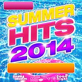 Summer Hits (2014) de Various Artists