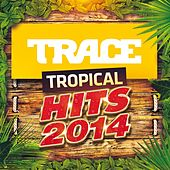 Trace Tropical Hits (2014) de Various Artists