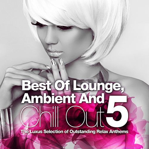 Best Of Lounge, Ambient and Chill Out, Vol.5 (The Luxus Selection Of 40 Outstanding Relax Anthems) by Various Artists
