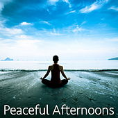 Peaceful Afternoons by Various Artists