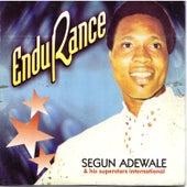 Endurance von Segun Adewale