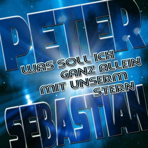 Was soll ich ganz allein mit unserm Stern von Peter Sebastian