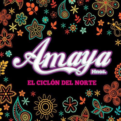 Que bonito de Orquesta Amaya Hnos.