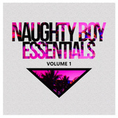 Naughty Boy Essentials, Vol. 1 by Various Artists
