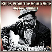 Blues From The South Side de Big Joe Williams