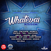 Whateva Riddim by Various Artists