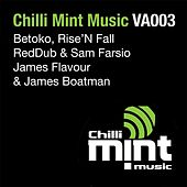 Chilli Mint Music VA003 by Various Artists