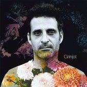 Grinjot by Pablo Grinjot
