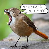 Ten Years in the Zoo by Various Artists