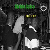 Pull It Up by Richie Spice