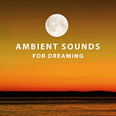 Ambient Sounds for Dreaming – Inner Relaxation, Spirit Harmony, Sleep Well, Long Night Music by Sleep Sound Library