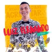 O Menino by Luiz Fernando