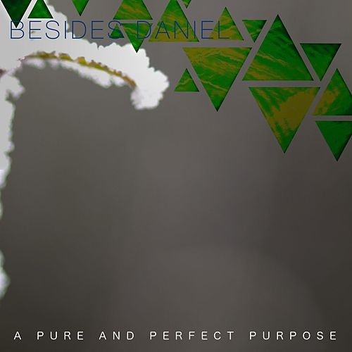 A Pure and Perfect Purpose by Besides Daniel