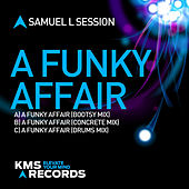 A Funky Affair by Samuel L Session