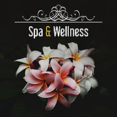 Spa & Wellness – Ambient Spa, Nature Sounds for Relaxation, Stress Free, Sensual Massage, Spa Music de Healing Sounds for Deep Sleep and Relaxation