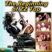 The Beginning of ZZ Top de Various Artists