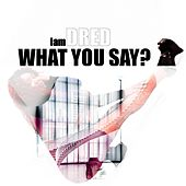 What You Say by Iamdred