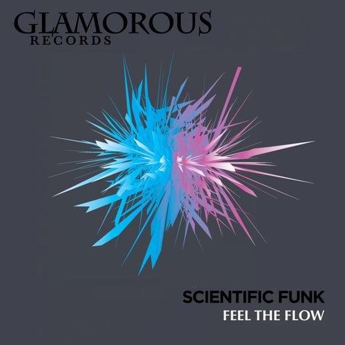 Feel The Flow by Scientific Funk