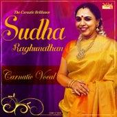 The Carnatic Brilliance - Sudha Raghunathan by Kannan