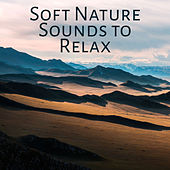 Soft Nature Sounds to Relax – Calming Nature Waves, Healing Melodies, Music to Rest, Inner Harmony de Nature Sounds Artists