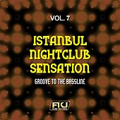 Istanbul Nightclub Sensation, Vol. 7 (Groove to the Bassline) by Various Artists