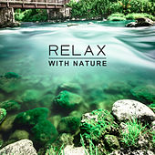 Relax with Nature – New Age Music, Peaceful Mind, Melodies to Calm Down, Pure Waves, Nature Sounds to Rest, Relaxing Therapy, Deep Sleep by Relaxation - Ambient