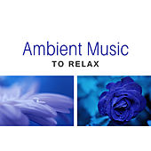 Ambient Music to Relax – Stress Relief, New Age Meditation, Soothing Sounds, Spirit Harmony by Relaxation Meditation Yoga Music