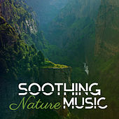 Soothing Nature Music – Relaxing Sounds to Calm Down, Easy Listening, New Age Music, No More Stress de Nature Sound Collection