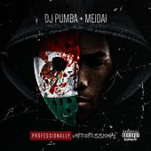 Professionally / Unprofessional - EP by Meidai