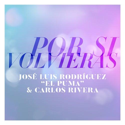 Por Si Volvieras by Carlos Rivera