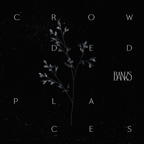 Crowded Places von Banks