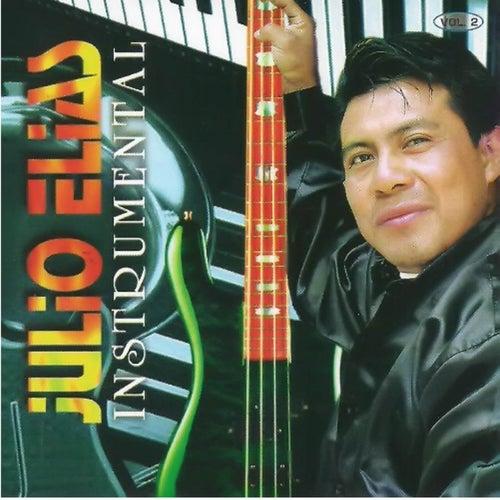 Instrumental, Vol. 2 by Julio Elias