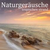 Naturgeräusche: Tropischen Strand von Entspannungsmusik