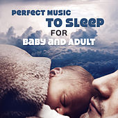 Perfect Music to Sleep for Baby and Adult (Nature Sounds, Zen Tracks, Fight Insomnia With Natural Treatments, Fall Asleep, Dream, Deep Meditation) by Various Artists