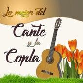 Lo Mejor del Cante y la Copla by Various Artists
