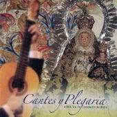 Cantes y Plegaria a Ntra. Sra. De Consolación by Various Artists