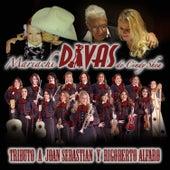 Tributo a Joan Sebastian y Rigoberto Alfaro by Mariachi Divas De Cindy Shea
