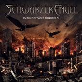 In brennenden Himmeln by Schwarzer Engel