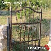 Slow Gait de Danny James